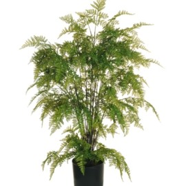 PIANTA FINTA BOSTON FERN TREE RUBBER VERDE CM 90