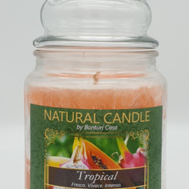 NATURAL CANDLE IN GIARA 580 GR 100% CERA VEGETALE TROPICAL